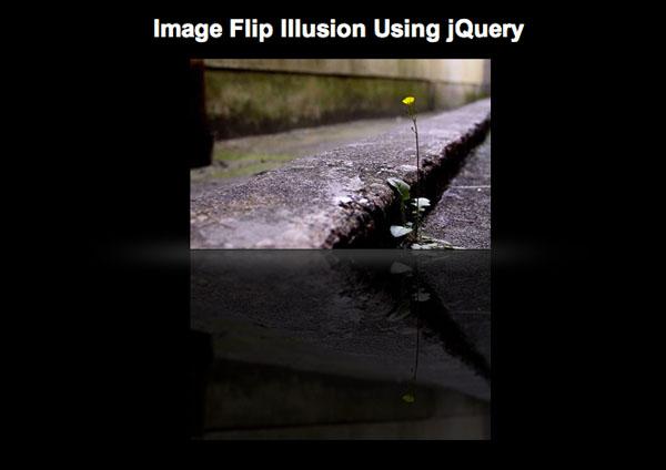 imageflip
